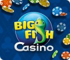 Big Fish Casino spill