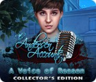 The Andersen Accounts: A Voice of Reason Collector's Edition spill